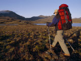 Backpacker Hikes across Tundra by a Lake in the Logan Mountains Photographic Print by Gordon Wiltsie