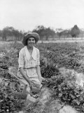 Young Lady Picks Strawberries Along the Eastern Shore Photographic Print by Clifton R. Adams