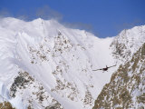 Ski Plane Circles Mount Vaughan Photographic Print by Gordon Wiltsie