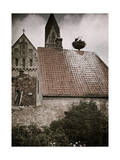 Storks Nest on Rooftop Next to Cathedral in Ribe Photographic Print by Gustav Heurlin