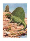 Dimetrodons' Spines Could Grow Up to Four Feet High Photographic Print by Charles Knight