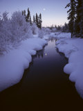 Rufus Creek, Headwaters, Wrangell, St Elias Np, Alaska Photographic Print by Michael S. Quinton