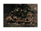 Two Balinese Men Prep Chickens to Fight Each Other for Entertainment Photographic Print by Franklin Price Knott