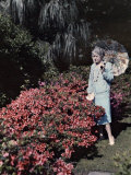 Woman Holding a Parasol Stands by a Row of Azalea Bushes Photographic Print by Clifton R. Adams