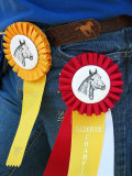Horseback Rider Displays Placement Ribbons on Her Belt Photographic Print by Charles Kogod