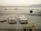 Cargo Waiting to Be Loaded onto Planes at the Beijing Airport Photographic Print by  xPacifica