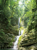 Jungles Where Edward James Built His Las Pozas Photographic Print by  xPacifica