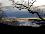 Tree Branch Silhouetted Against the Clouds and Mountains Below Photographic Print by  White & Petteway