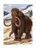 Woolly Mammoth Is a Close Relative to the Modern Elephant Photographic Print by Charles Knight