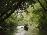 Couple Canoeing under Tree Cover Down the Shenandoah River Photographic Print by Greg Dale