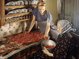 Two Local Women Make Jelly Out of Northern Mountain Cranberries Photographic Print by Volkmar K. Wentzel