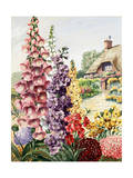 European Garden with Foxglove, Stock, Wallflower, and Scabiosa Giclee Print by Else Bostelmann