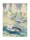 Narwhal Whales are Being Hunted by Eskimos Giclee Print by Else Bostelmann
