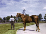 Champion Horse Man-O-War Poses with One of His Grooms Fotografisk tryk af B. Anthony Stewart