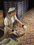 Factory Worker Sorts Through Candy on a Conveyor Belt Photographic Print by Willard Culver