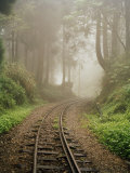 Train Tracks Found on the Forest Floor Bend around a Corner Photographic Print by  xPacifica