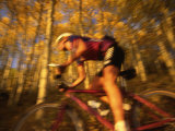 Action Shot of a Woman Mountain Biking Through an Aspen Forest Photographic Print by Kate Thompson
