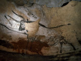 Paleolithic Art of Bulls on Calcite Walls of Lascaux Cave Photographic Print by  Keenpress