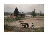 Farmer and His Horses Plow a Field by a Red House on the Riverbanks Photographic Print by Jacob Gayer