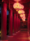 Chinese Lanterns Line a Traditional Building in Chinese Gardens Photographic Print by  xPacifica