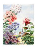 Portrait of Wildflowers Native to Eastern United States Giclee Print by Else Bostelmann