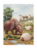 Toxodon, Glyptodon and Macrauchenias Lived in South America Photographic Print by Charles Knight