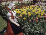 Girl Wearing a Traditional Dutch Dress Looks at Tulips in a Garden Photographic Print by Charles Martin