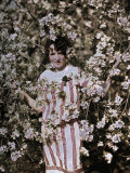 Girl Poses Amongst Apple Tree Blossoms in Winchester Photographic Print by Charles Martin