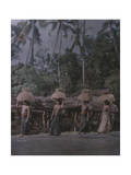 Balinese Women Labor to Help Provide Food for their Communties Photographic Print by Franklin Price Knott