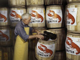 Man Packs Live Lobsters on Ice in Barrels for Shipping Photographic Print by B. Anthony Stewart