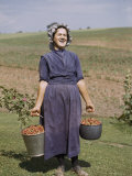 Laughing Mennonite Woman Carries Buckets of Strawberries Photographic Print by Howell Walker