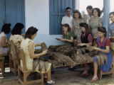 Women Inspect Tobacco Leaves and Select the Best for Wrapping Cigars Photographic Print by Melville Grosvenor
