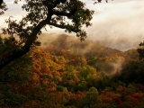 Mist Enshrouds Mountains Below Which are Rich with Autumn Color Photographic Print by White & Petteway