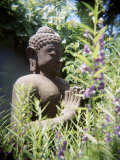 Stone Statue of Buddha Stands Amongst Flora in a Garden in Bali Photographic Print by  xPacifica