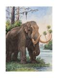 When the Age of Man Began, the Mastodon Still Inhabited North America Photographic Print by Charles Knight