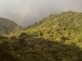 Rainbow over Monteverde Cloud Forest, Monteverde, Costa Rica, Photographic Print