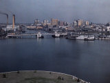 This View Looks over the Tampa Waterfront and City Photographic Print by Clifton R. Adams