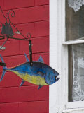 Moving Tin Fish Cut-Outs Add Whimsey to the Lunenburg Streets Photographic Print by Scott Warren