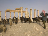 Ruins of the Ancient Byzantine City of Palmyra Photographic Print by Jim Richardson