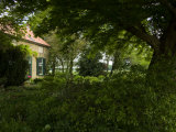 Lush Vegetation around a Cottage Home Photographic Print by Mattias Klum