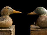 Antique Duck Decoys Sit on an Old Wooden Crate Photographic Print by Joel Sartore