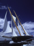 Sailboats on a Windy Day Photographic Print by Michael Melford