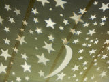 Rhine River, Germany, Illuminated Ceiling with Stars and Moon Photographic Print by  Keenpress