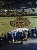 Made from 100,000 Plants, a Zoo's Floral Clock Tells Time Accurately Photographic Print by Howell Walker