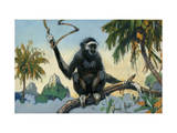 White-Handed Gibbon Travels in Large Bands Photographic Print by Elie Cheverlange
