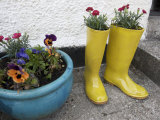 Ceramic Yellow Boots Function as Planter, Inner Hebrides Photographic Print by  Keenpress