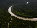 Meandering River and Riverine Forest Area North of Kuching Photographic Print by Mattias Klum