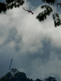 Helicopter Hoists a Tree Trunk Out of the Malua Forest Reserve Photographic Print by Mattias Klum
