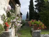 Tuscan House with Roses and Pelagonier in the Gardens Photographic Print by Keenpress