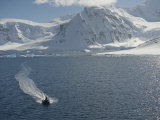 Man Cruising the Gerlache Strait in an Inflatable Boat Photographic Print by  Keenpress